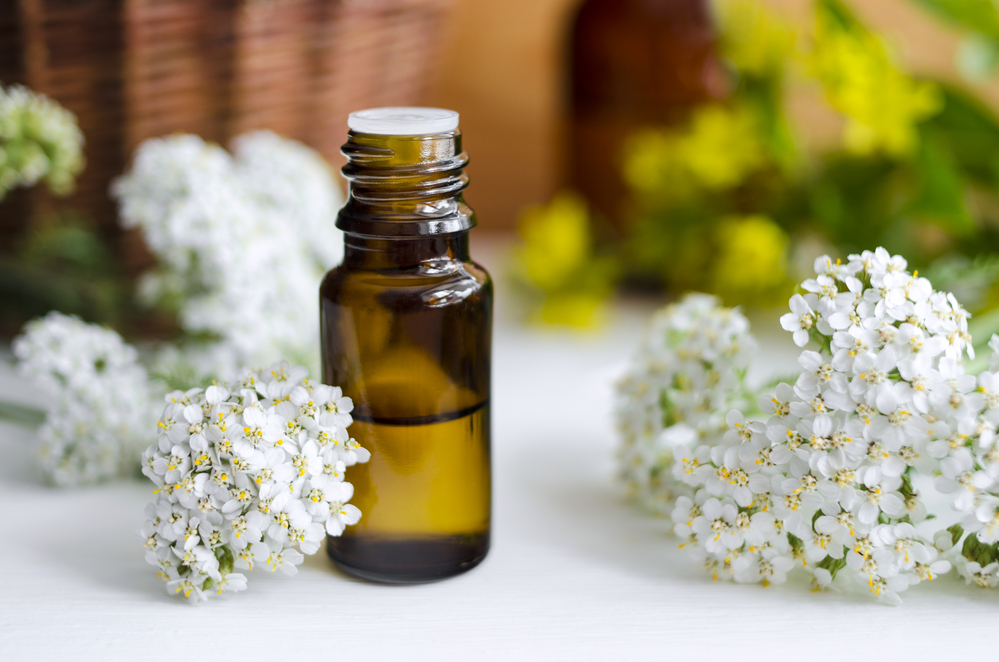 Best Herbs for Natural Pain Relief & Inflammation