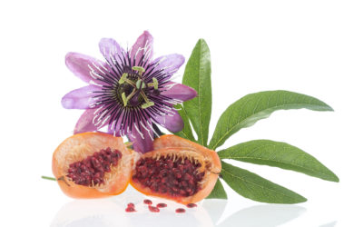 Benefits of Passion Flower: Calming Mind & Body