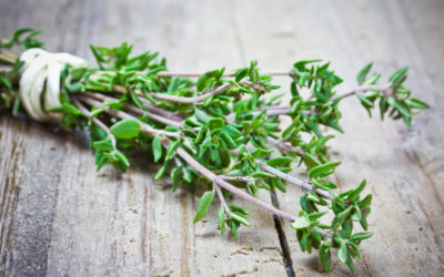 7 Strong Health Benefits of Thyme