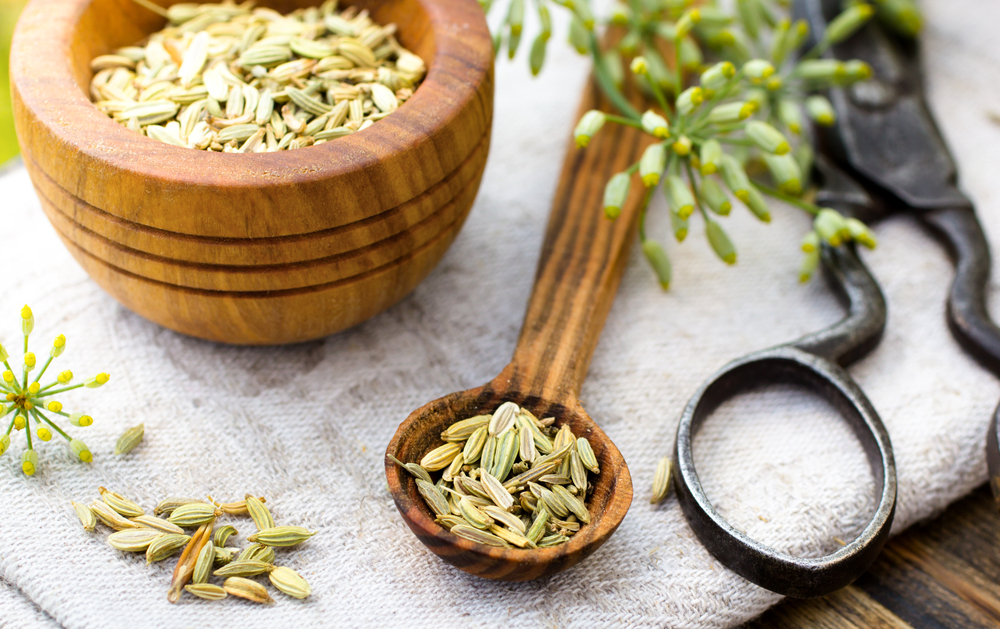 Key Benefits of Fennel Tea and Fennel Seeds