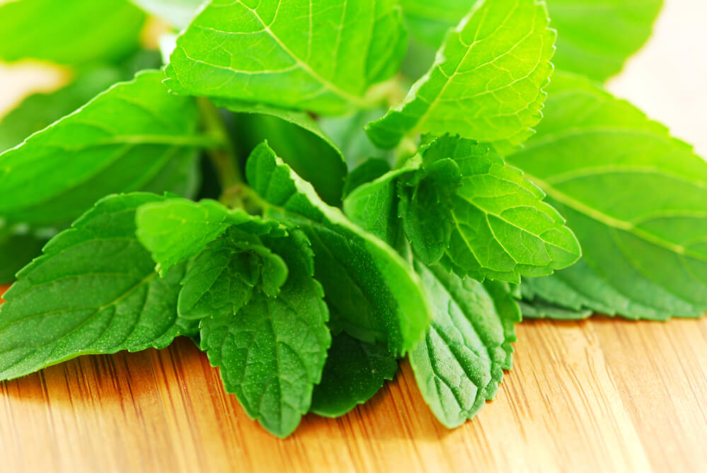 6 Benefits of Spearmint Tea and Herb